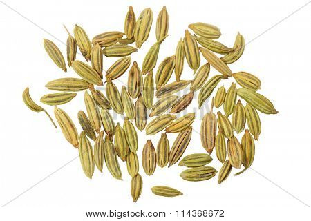 Dried anise seeds aniseed isolated over white background