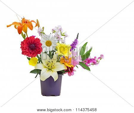 Colorful Summer flower bouquet from homegrown garden