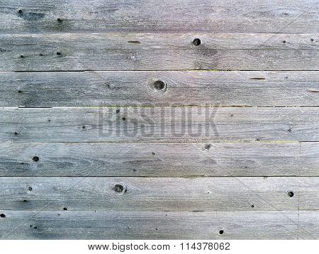 Perfect natural gray wood texture