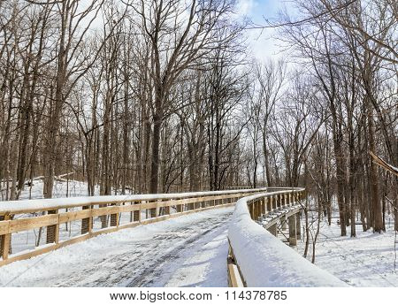 Snowy Boardwalk Trail