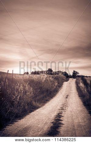 Tuscan Rural Scenery