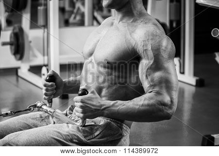 Muscular man in the gym. Work on the arm muscles.