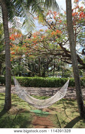 Hammock under the blue sky in Guam Micronesia
