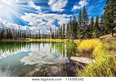 Great morning sun is reflected in the smooth water of the lake. On the shores of the lake grow coniferous forests. Jasper National Park in the Rocky Mountains