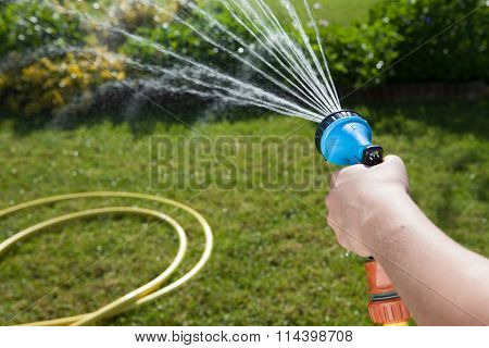 Woman's hand with garden hose watering plants, gardening concept