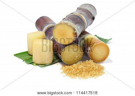 Sugarcane and sugar on white background.