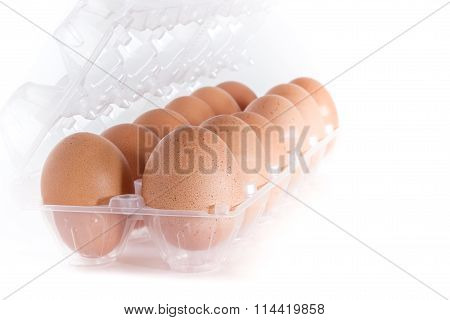 Eggs Container
