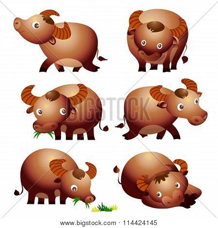 Vector of Cute Buffalo Cartoon Vectoe Many Actions