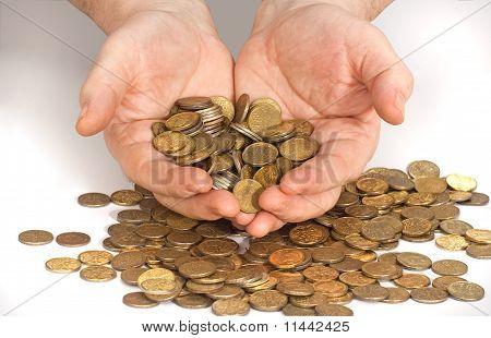 Gold Hoard Wealth
