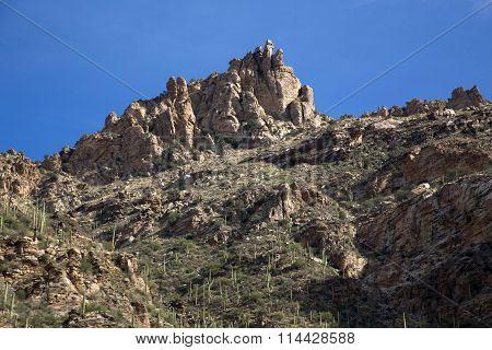 The Cliffs of Sabino Canyon