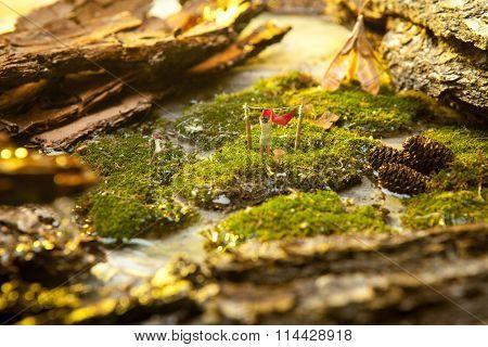 Miniature people  on background of moss and bark