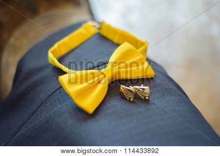 Yellow Butterfly Groom