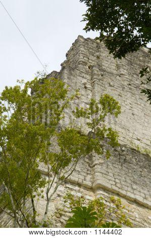 Temple Tikal Guatemala