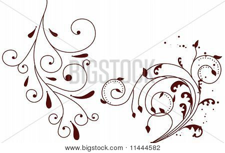 drawng floral background elements on white background