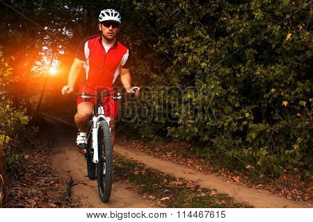 Man is cycling in autumn forest