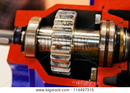 Gearbox On Large Electric Motor