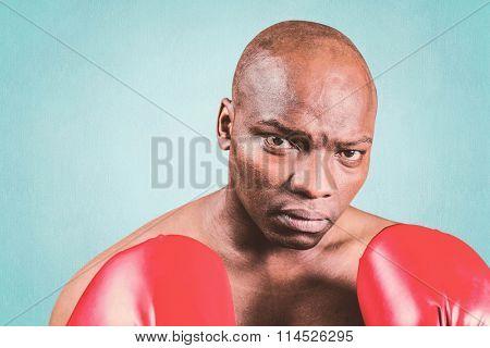 Portrait of bald boxer in gloves against blue background