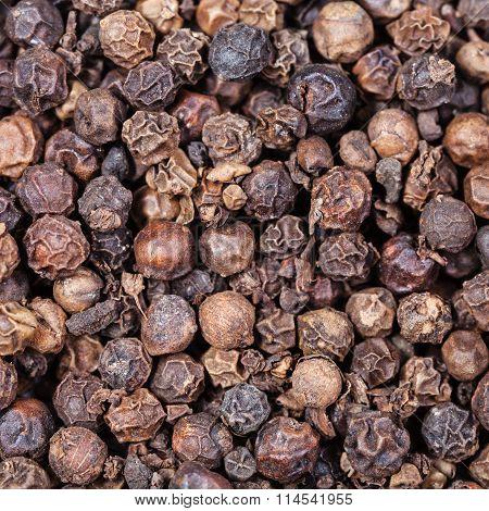 Black Pepper Peppercorns Close Up