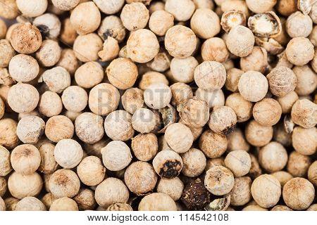 White Pepper Peppercorns Close Up