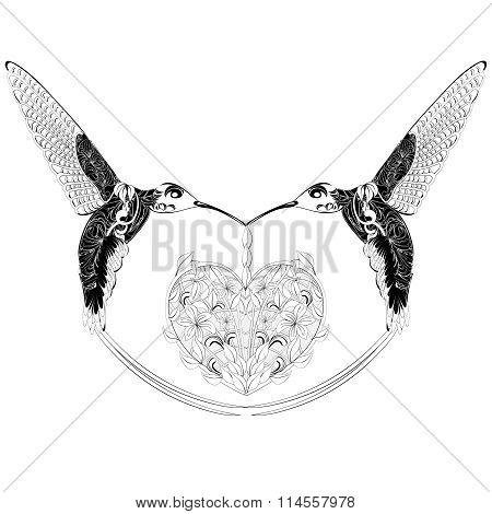 Hummingbird fantasy