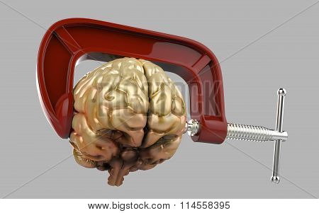 Headache brain in a clamp isolated