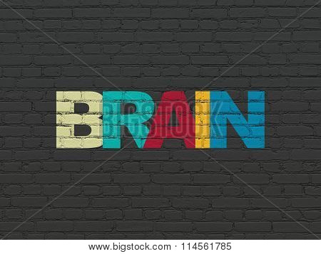 Health concept: Brain on wall background