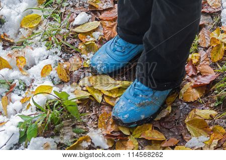 Blue Shoes, Snow, Grass And Leaves. Travel