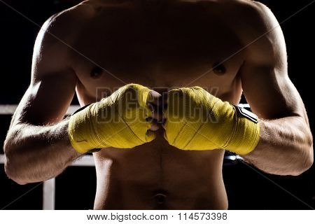 Professional healthy fighter is ready for competition
