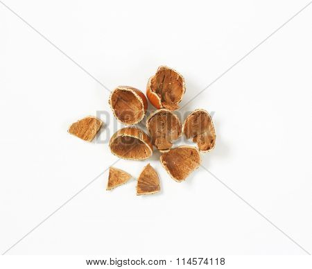 empty nutshells on white background