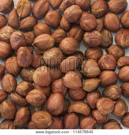 fresh big hazelnuts