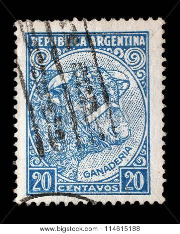 ARGENTINA - CIRCA 1955: A stamp printed in Argentina shows image of a cow, celebrating livestock breeding (ganaderia), series, circa 1955