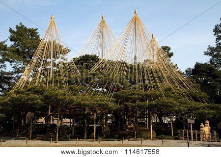 Kenroku-en (Japanese garden) in Kanazawa Ishikawa Japan (winter)