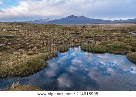 Nature Of Altiplano