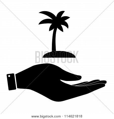 Palm in hand icon