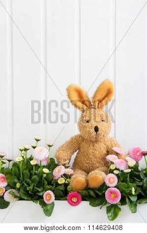 Plush bunny sitting in pink daisy flowers for easter decoration.