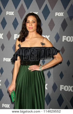 LOS ANGELES - JAN 15:  Michaela Conlin at the FOX Winter TCA 2016 All-Star Party at the Langham Huntington Hotel on January 15, 2016 in Pasadena, CA