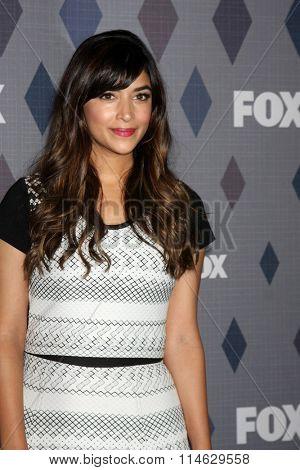 LOS ANGELES - JAN 15:  Hannah Simone at the FOX Winter TCA 2016 All-Star Party at the Langham Huntington Hotel on January 15, 2016 in Pasadena, CA