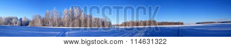 Panoramic view of snowy fields farmland in winter