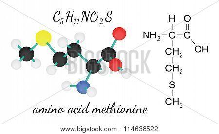 C5H11NO2S methionine amino acid molecule