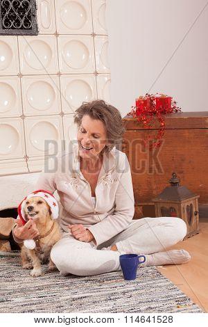 Animal Christmas spirit at a Senior with your dog.