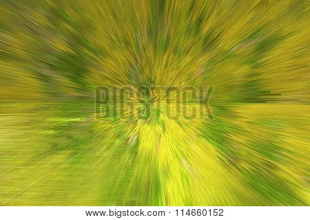Texture With Patterned Yellow Blurs