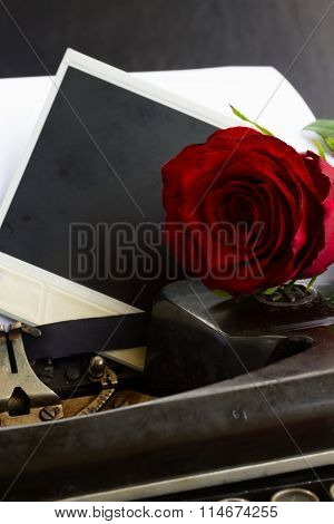red rose on typewriter