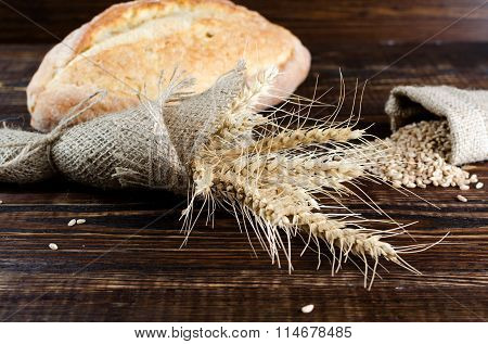Spikelets Of Wheat In Sacking