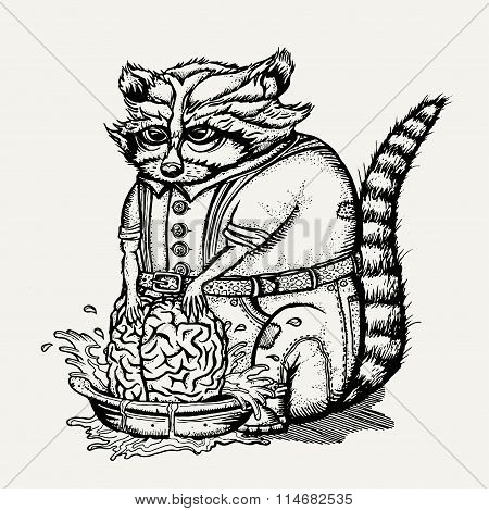 Pen and ink illustration of humanlike raccoon washing brain