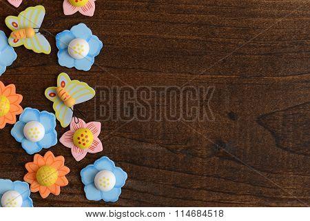 closeup flowers and butterflies