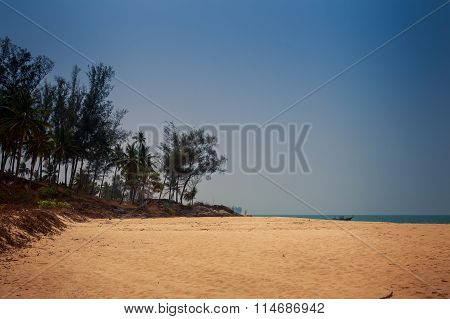 View Of Sand Beach With Tropical Plants Against Azure Sky