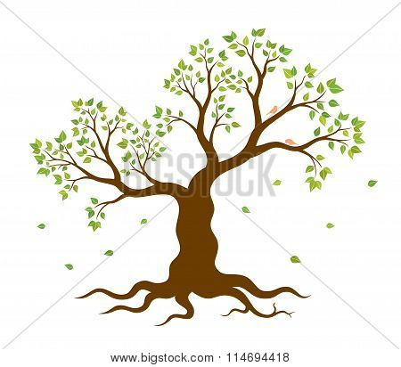 Vector illustration of tree with green leaves on white background
