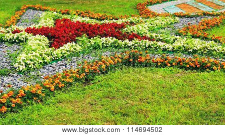 Star Shaped Flowerbed