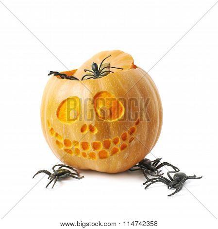 Smiling Jack-O-Lantern pumpkin isolated