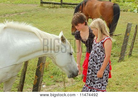 horse and girls